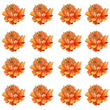 Orange flower pattern - 111882916