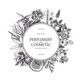 Fototapety Vector design with hand drawn perfumery and cosmetics ingredients. Decorative background with vintage aromatic plants for perfumery