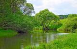 Riverside Luzha River in the Kaluga region