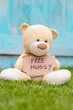 Teddy bear holding cardboard with information Free Hugs