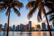 Miami, Florida skyline and bay at sunset seen through palm trees