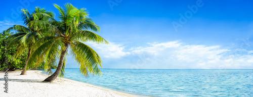 Wymarzona plaża na samotnej wyspie na Pacyfiku