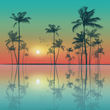 Tropical palm trees  at sunset. Highly detailed and editable - 112119169