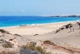 spiaggia selvaggia - 112163707