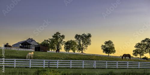 Poster Kentucky farm at sunrise