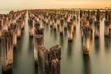 Mooring poles at sunset at Princes Pier