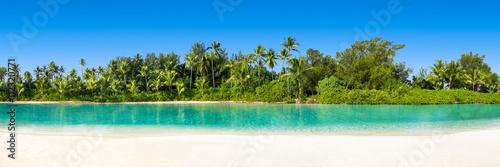 Palm beach w tropikach