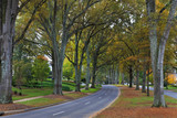 Queens Road West in Charlotte in the Fall Season