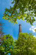 Eiffel Tower and green trees as border in Paris France at sunny day over the blue sky background