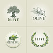 Постер, плакат: Various Olive logo design templates Olive branch olive tree and olive branch wreath illustration