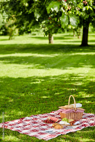Enjoying a healthy outdoor spring picnic Poster