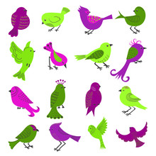 Set of cute cartoon birds isolated on white background. Collection of birds in purple and green colors. Vector illustration.