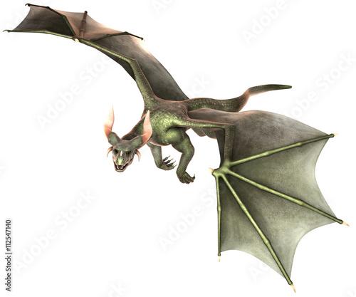 Foto op Plexiglas Draken Elegant dragon isolated on white background 3d illustration
