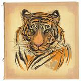 tiger - colored line art - 112555764