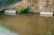 Flood in Paris: Ile aux Cygnes (Swans Island) embankment. France
