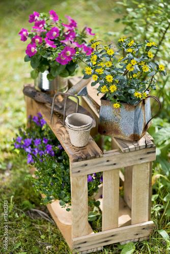 Zdjęcia na płótnie, fototapety, obrazy : Blumen im Garten