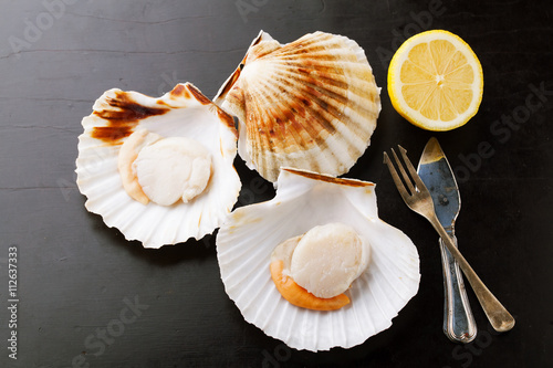 Poster, Tablou Raw fresh scallops in the shell with lemon