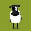 Schaf mit Augenklappe
