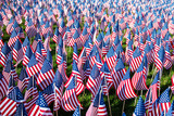 Field of American flags on display for Memorial Day or July 4th  - 112673342