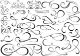 Calligraphic Shapes Collection - Design Elements Illustration, Vector - 112700572