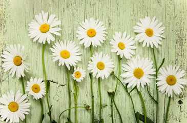 Chamomile flowers on green wooden rustic background.