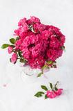 piccole rose rosa in vaso di vetro