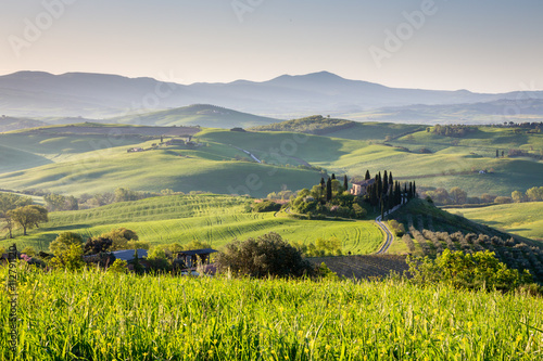 Peaceful morning in countryside, Tuscany, Italy © selitbul