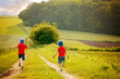 Adorable children, boy brothers, running in a field in the rural