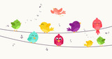 Colorful birds sitting on wire  - 112850778