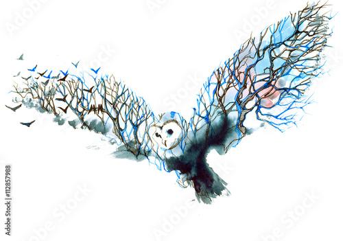 owl - 112857988