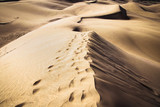 Sandy dunes in famous natural Maspalomas beach on Gran Canaria