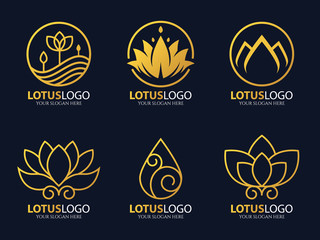 Gold line lotus logo vector art set design