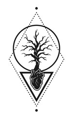 Heart of the tree as a symbol of life.