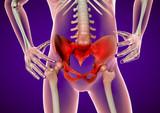 Dolore all'anca e bacino, spina dorsale, corpo umano
