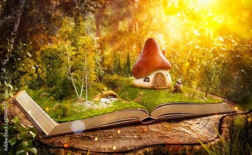maison-champignon-magique