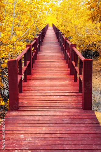 obraz PCV wooden bridge & autumn forest.