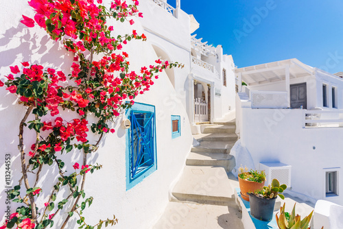 Fototapeta Traditional cycladic whitewashed street with blooming bougainvillea in the summer, Santorini, Greece