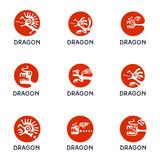 Dragon logo set, vector illustration.