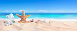 Fototapety Golden Sand With Seashell And Starfish - Tropical Seashore