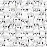 Meerkat seamless pattern - 113279176