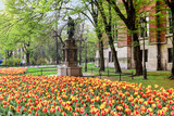 KRAKOW, POLAND - APRIL 17, 2016: Fields of tulips in the city ce