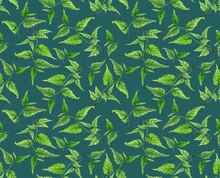 Botanische gebladerte naadloos patroon. Aquarel hand beschilderde sierlijke tak, groene bladeren op zee groene achtergrond, bloemmotief