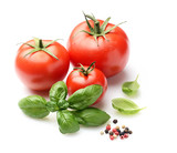 fresh tomato and basil leaf isolated on white background