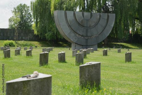 Terezin,Czech Republic,cemetery Poster