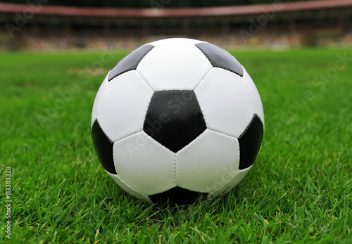 Soccer ball on green grass Poster