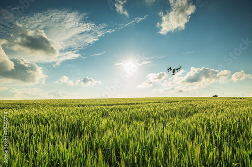 Juliste Flying drone above the wheat field