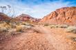 Faint Dirt Path in Nevada