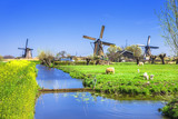 Fototapety traditional Holland countryside