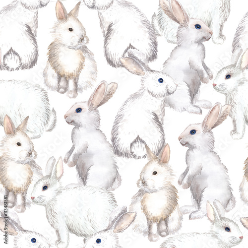 white rabbits background - 113481581
