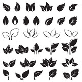Set of black leaves design elements isolated